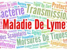 maladie de Lyme, tique, borréliose